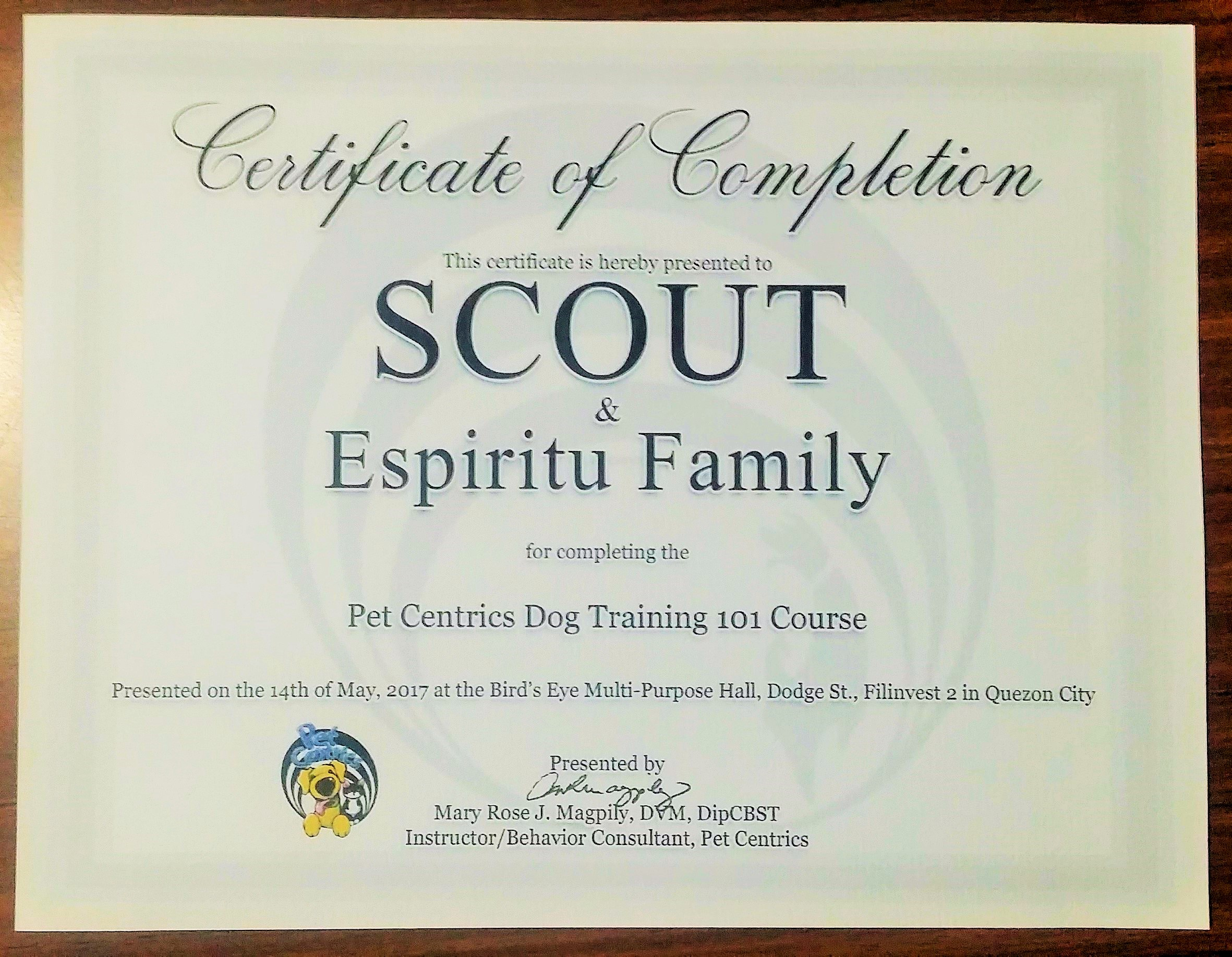certificate of scout dog training