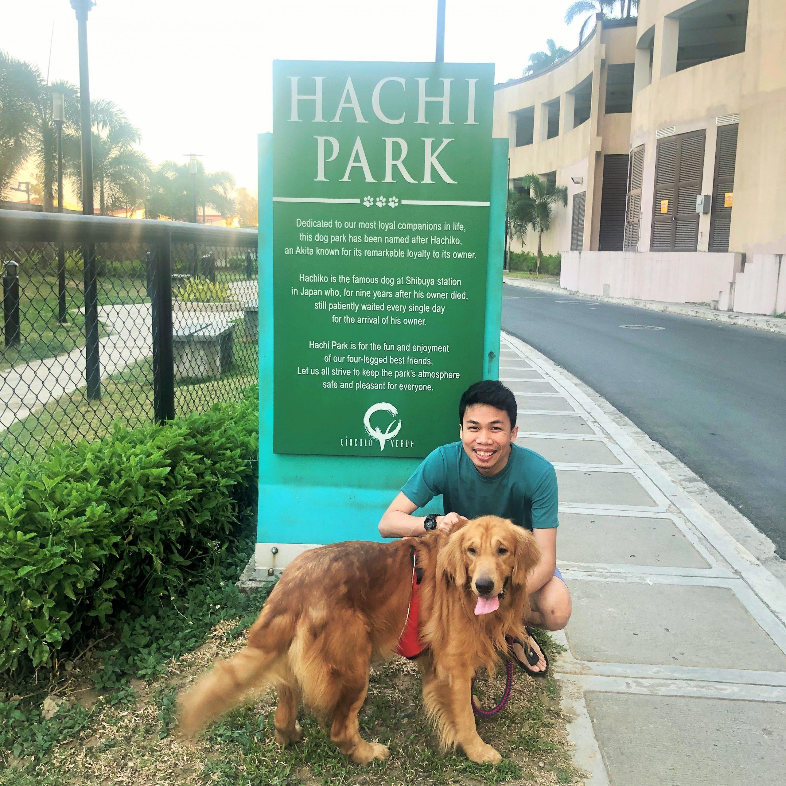 scout at hachi park